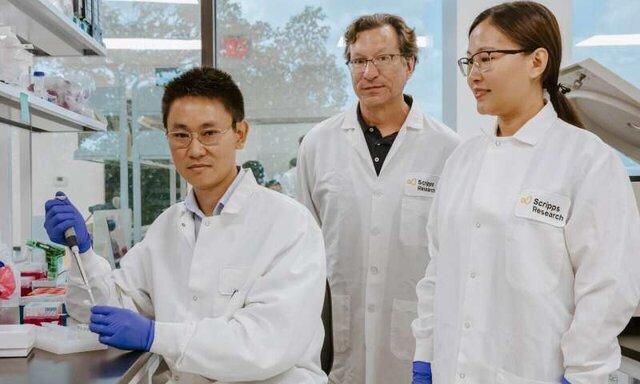 توسعه فناوری جدید برای کنترل دوزها در ژن درمانی